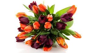 beautiful bouquet of flowers beautiful flowers bouquet 6916675