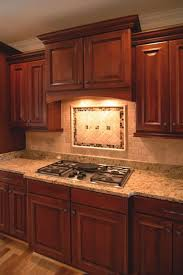Range Hood Ideas Kitchen Kitchen Cabinet Range Hood Design Kitchen Cabinets Ideas Kitchen