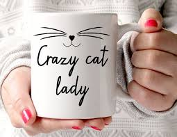 best 25 cat lady ideas on pinterest cat quotes crazy cat lady