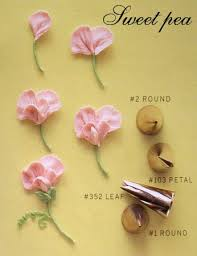 best 25 icing flowers ideas on pinterest wilton piping tips