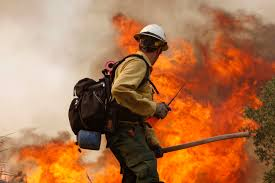 hotshots hotshots the special forces of firefighting pictures