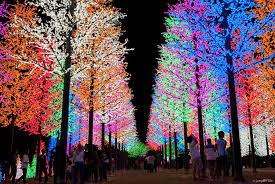 digital lights gold bokeh string lights