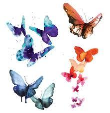 watercolor butterfly exploratorium