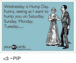 Hump Day Meme Dirty - lovely hump day memes 18 hump day meme funny dirty hump day memes