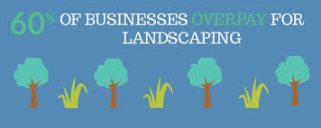 Landscaping Lawn Care by Save Time U0026 Money On Landscaping U0026 Lawn Care With Ace Budget Services