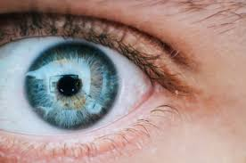 History Of Blindness Are Leading Global Causes Of Blindness Preventable Medical News