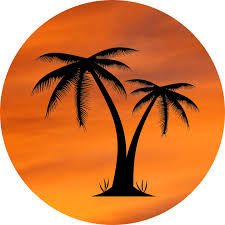orange sky with palm tree locketz design butterflyze