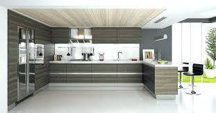 Door Fronts For Kitchen Cabinets Kitchen Cabinets Door Fronts Modern Kitchen Cabinet Door Fronts Hfer