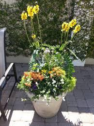 Indoor Container Gardening - garden design garden design with tampa container gardening for