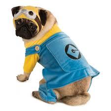 minion costume minion dog costume with same day shipping baxterboo