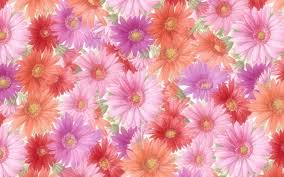 Pink Vs Wallpaper by Flower Pink Bright Nature Flowers Albums Wallpapers Hd Free Pink