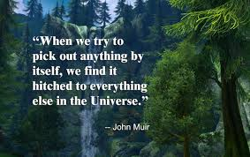 john muir fire quote john muir death quotes 2017 quotes u0026 sayings