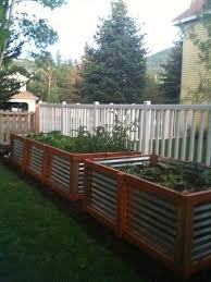 Corrugated Metal Garden Beds Raised Garden Beds Corrugated Steel And Cedar For My Backyard