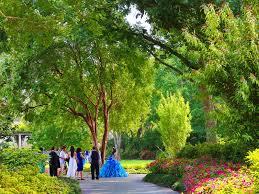 Garden Botanical Dallas Arboretum And Botanical Garden Dallas Tx 75218 Visit Dallas