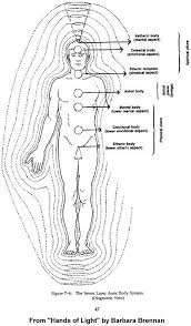 100 endocrine system coloring pages anatomical drawing stock