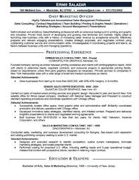 Standard Job Resume by 461 Best Job Resume Samples Images On Pinterest Job Resume
