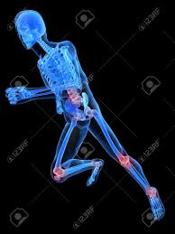 Joints Human Anatomy Running Skeleton With Painful Joints Stock Photo Picture And