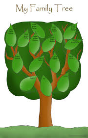 108 best family tree template images on pinterest family trees