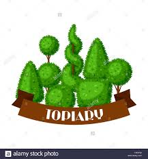 boxwood topiary garden plants background with decorative trees