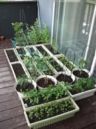 Gardening Ideas Pinterest Everyday Finesse Pinterest Gardening Ideas
