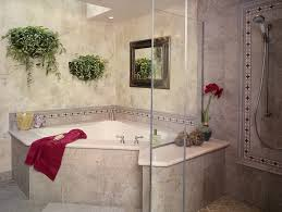 Corner Tub Bathroom Ideas by Bathroom Sterling Bathtub Shower Design For Small Bathroom Ideas
