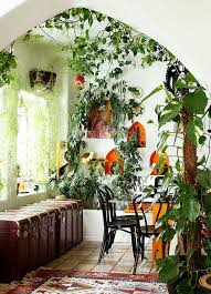 beautiful house plants awesome design beautiful indoor plants ideas best images about