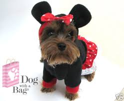 Halloween Costumes Yorkies Disney Minnie Mouse Dress Chihuahua Yorkie Dog Coat Medium