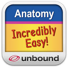 Anatomy And Physiology Made Incredibly Easy Pdf Anatomy U0026 Physiology Made Easy Android Apps On Google Play