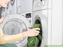 Does Dryer Kill Bed Bugs The Best Ways To Prevent Bed Bugs Wikihow