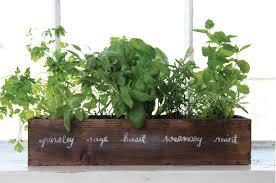 window herb harden to grow a windowsill herb garden