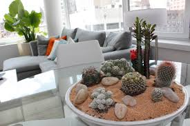 indoor plant design comfortable 7 for using plants in modern