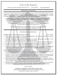 Chronological Resume Samples Pdf by Criminal Defense Attorney Resume Sample Resume For Your Job