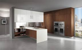 Contemporary Design Kitchen by Italian Kitchen Design Gen4congress Com