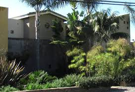 lush and waterwise landscape design in carlsbad