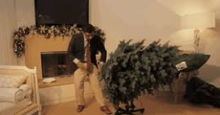 dinesh d souza touts friend s artificial tree ny daily