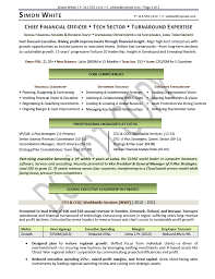 cfo resume exles cfo resume chief financial officer resume sles