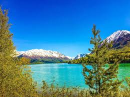 Alaska Wild Swimming images 15 incredible alaska lakes that will demand your attention this summer jpg