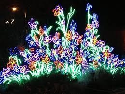 garden of lights hours river of lights albuquerque biopark botanic gardens youtube