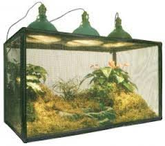 educational science butterfly cages insect cages insect