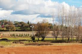 Ranch Homes For Sale Milton Ranch Real Estate Milton Ranch Homes For Sale
