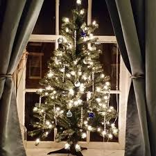buy christmas tree which type of christmas tree should you buy d a dunlevy landscapers