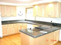 Ikea Kitchen Cabinets Installation Cost Cost Of Kitchen Cabinets Cabinet Refinishing Costs Cost To Install