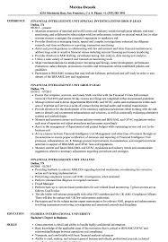 resume template financial accountants definition of terrorism financial intelligence unit resume sles velvet jobs