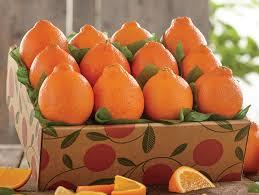 fruit by mail mini honeybells mail order honeybells florida mini honeybell