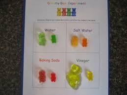 best 25 gummy bear experiment ideas on pinterest gummy bear