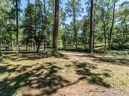 pine trees houston real estate houston tx homes for sale zillow