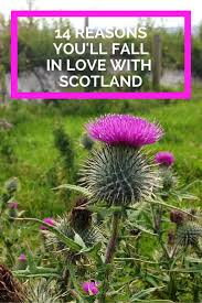 14 reasons you will fall in love with scotland the college tourist