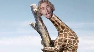 Meme Giraffe - look at this giraffe nickelback photograph meme youtube