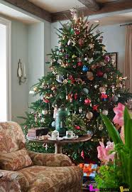 17 best cheap choice traditional christmas tree images on