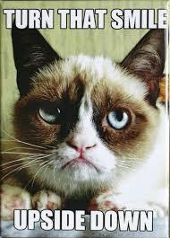 Meme Magnets - turn that smile upside down grumpy cat fridge magnet tardar sauce